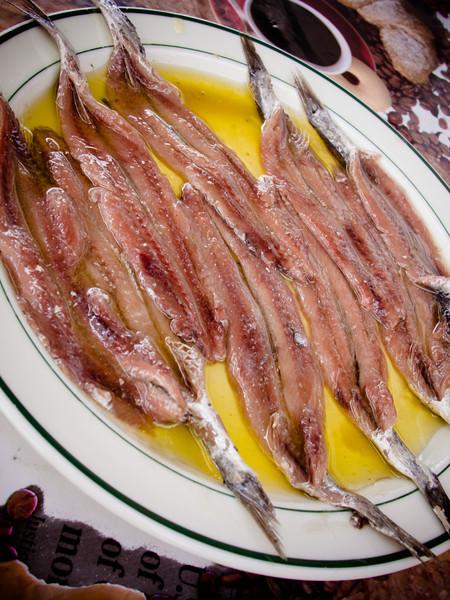 sardines vertical.jpg