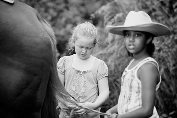 Jenny and Horses