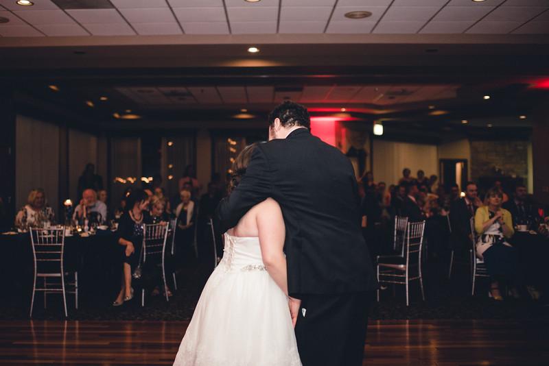 Chicago Wedding Engagement Photographer 1753.jpg