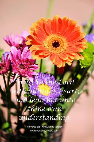Probverbs 3-5 h .jpg