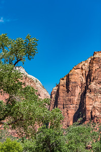 Zion National_2861
