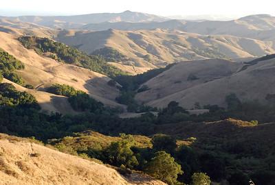 2010-08-22_30 AZ CAL