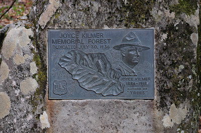 Joyce Kilmer Memorial Forest