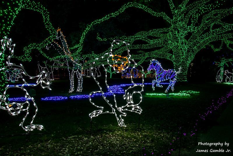 Houston-Zoo-Lights-2905.jpg