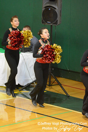 01/18/2014 Wheaton HS Poms Division 3 at Damascus HS,  Photos by Jeffrey Vogt Photography & Kyle Hall