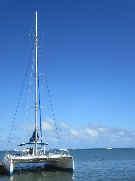 027_The West Coast. Sail the Dolphin Coast. O'Plézir Catamaran Trip.JPG