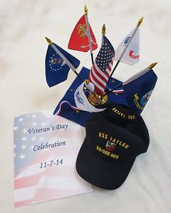 Veterans Day in The Pinehills 2014