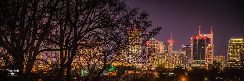 Nashville Skyline New Years Eve '17
