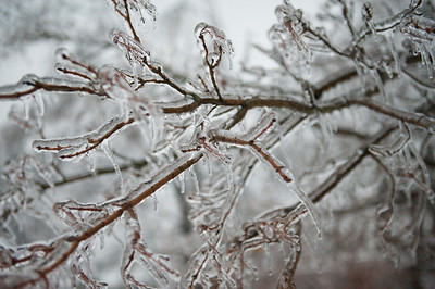 Ice and snow storm 2009