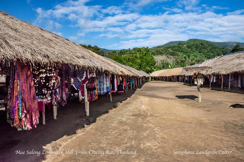 _DSC5438Mae Salong Hill Tribe Village.jpg