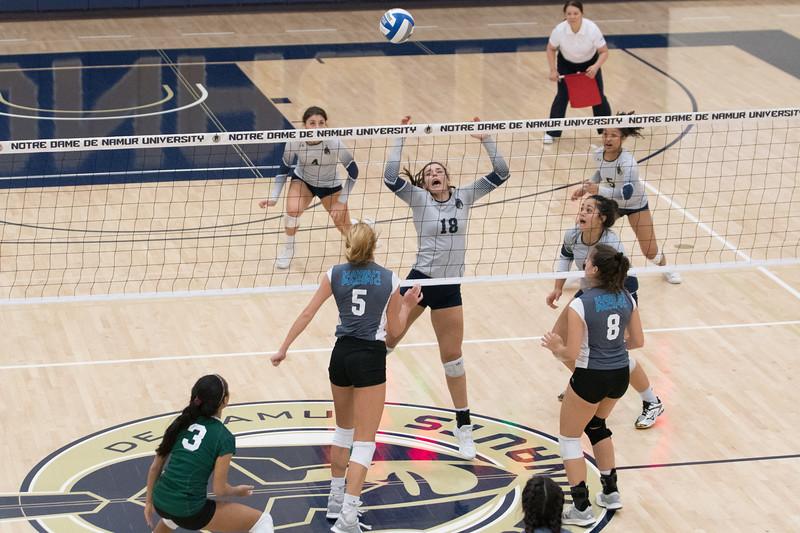 HPU Volleyball-93017.jpg