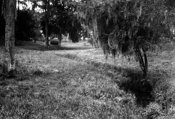 1928-Westbrook Park.jpg