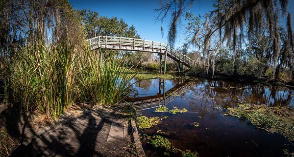 Jean Lafitte National Park   Feb 2020