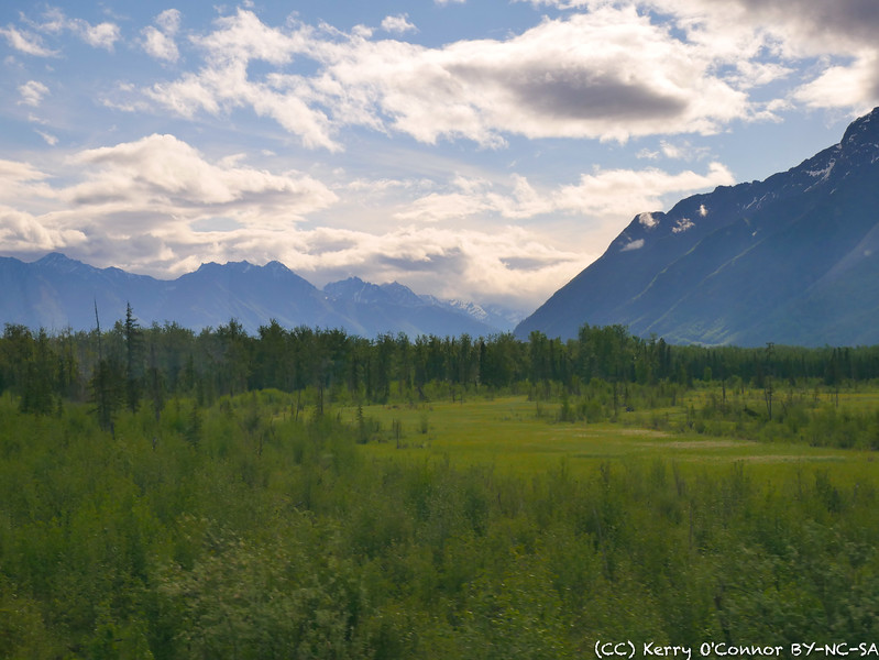 View from train to Denali - landscape around Palmer