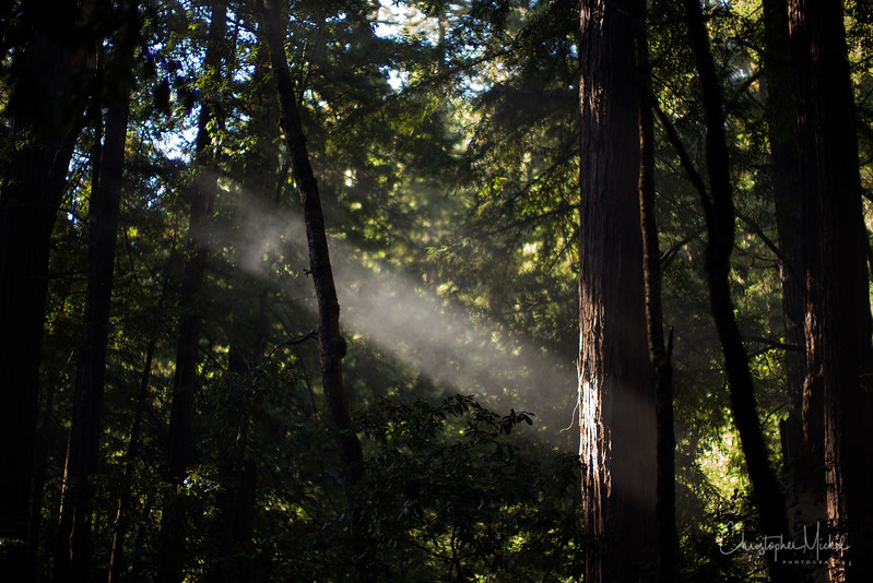 Oct052013_camping_0488.jpg