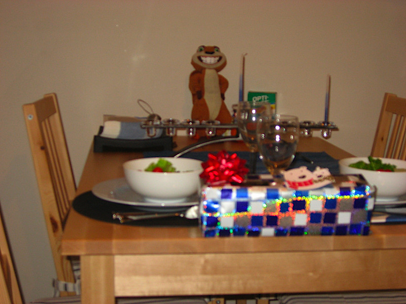 Hammy attended dinner on the first night of Chanukkah. He's so clean and new looking!