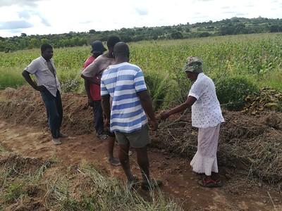 Lemba Soil
