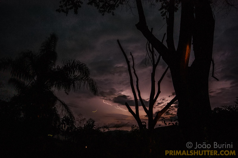 Thunderstorm and fireflies
