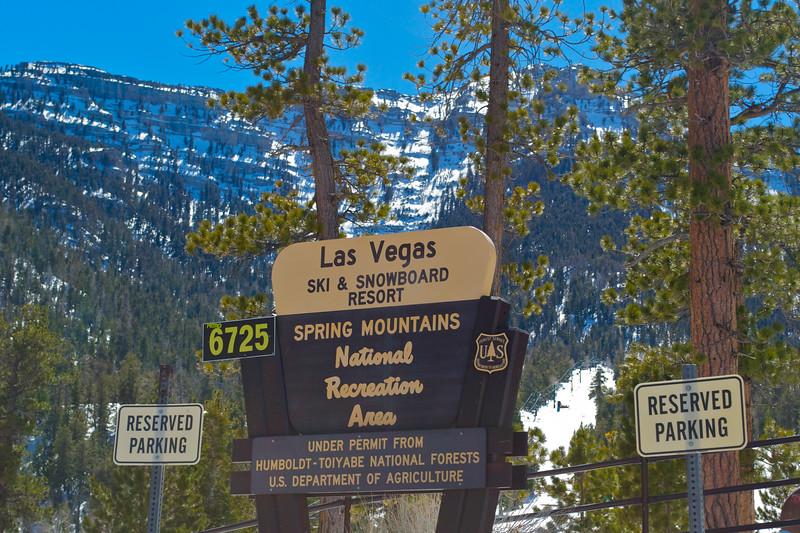Mojave Desert & Red Rock Canyon, Vegas-DSC_2215-083.jpg