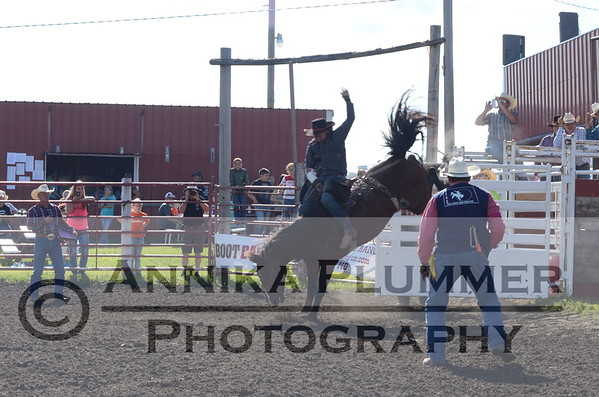 Wing NDRA Rodeo - June 20, 2015