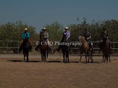 Morgan Horse Team