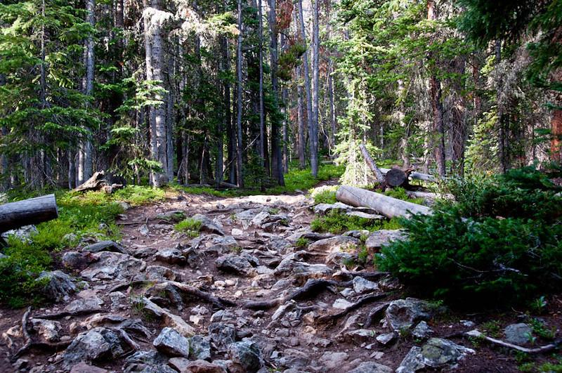 20100717_Colorado_Vacation_2010_0159
