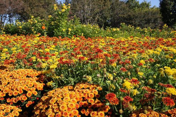 Dallas Arboretum October '08