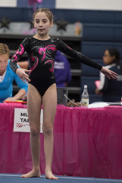 Gymnastics Meet Jan 10, 2016
