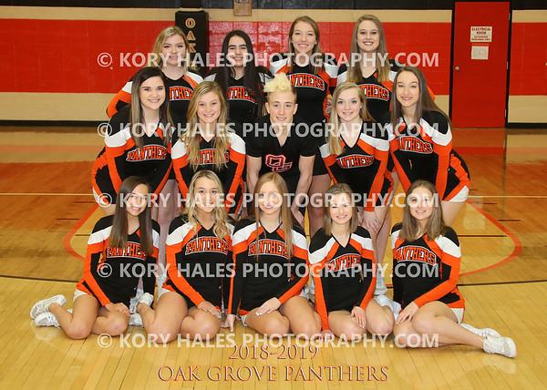 2018-2019 OGHS Cheerleading