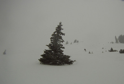 11_13 skiing
