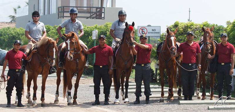 Asociacion Peruana de Endurance Ecuestre