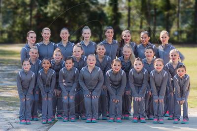 Team 2017