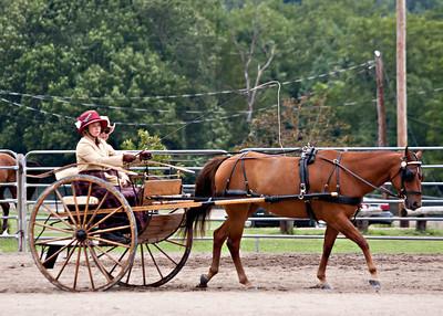 08/13/11 Pleasure Horse Driving