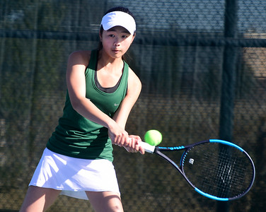 Girls tennis: Niwot reigns in Class 4A regional