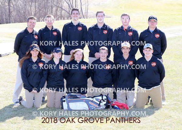 2018 OGHS Boys Golf
