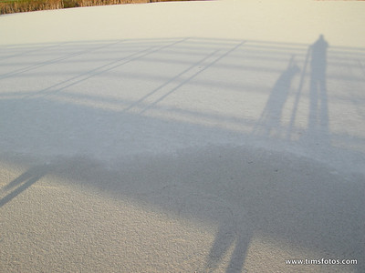 Snow Midwinter 2010