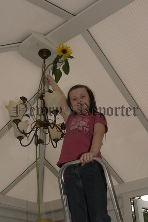 07W34N217 (W) Sophies Sing.jpg