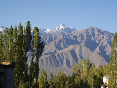 Mountains, Mandalas, and Momos