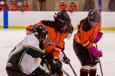 Game 11 - NBYHL vs. Pleasant Valley