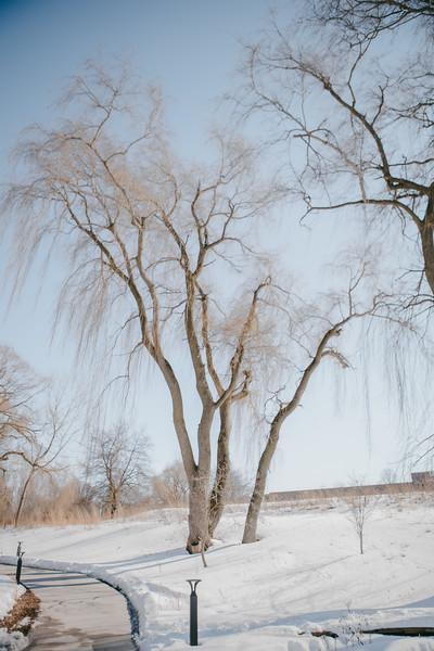 AVS_EcoPreserve_Winter2021-34.jpg