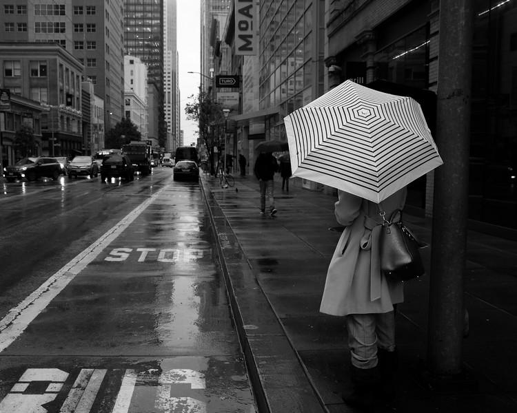 San Francisco Black and White