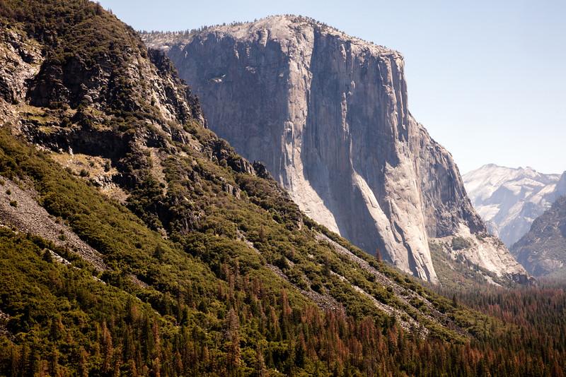 Yosemite_2016_Park-2.jpg