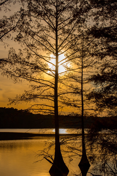 SunsetStumpyLake-004