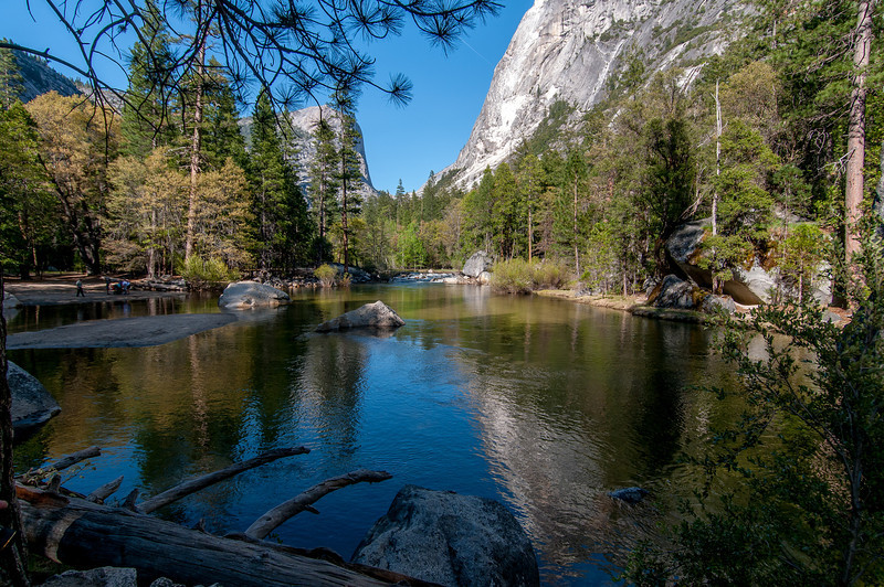 Merced River meadows in Yosemite National Park, California