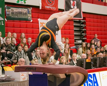 021719 Gymnastics State (DQ)