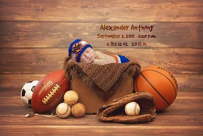 Alexander Anthony 2019