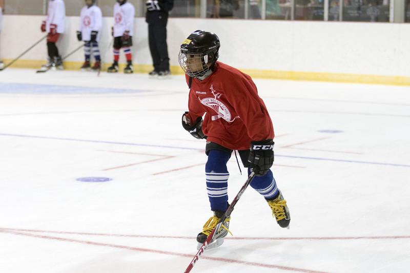 Muskoka Hockey School Early game Aug 1 2016