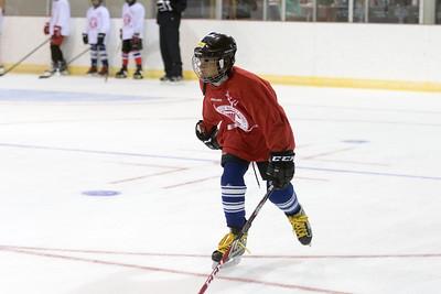 Muskoka Hockey School