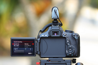 Canon EOS Rebel T3i Video Test