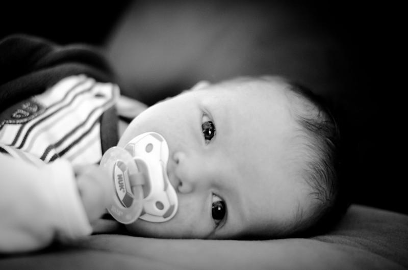 2012 Baby Newell